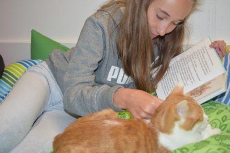 Entspannung pur in heimischer Atmosphäre - sowohl für Kinder als auch für die Katzen. Foto: ls