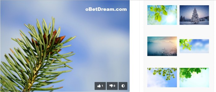 free image for blog or website royalty free