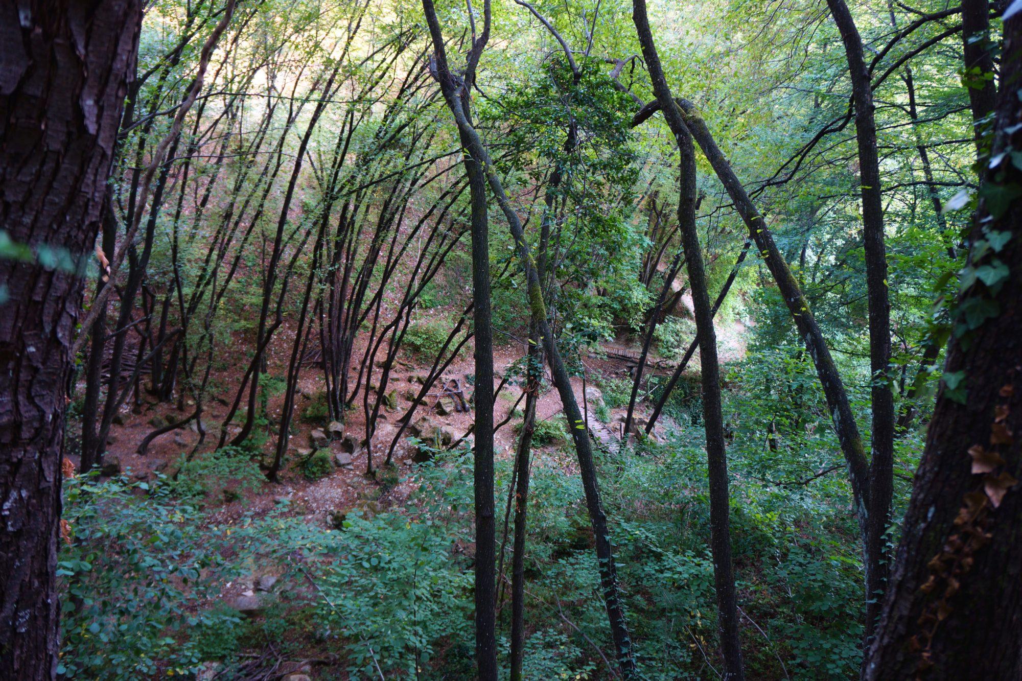 region emilia-romania włochy pejzaze widoki co zobaczyc wodospady bucamante