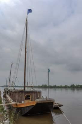 Le Thoureil lors des innondations de juin-8