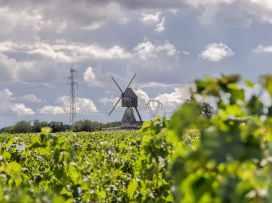 Montsoreau visite du village-31