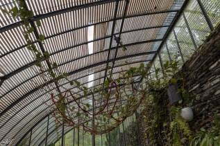 Arboretum Gaston Allard à Angers