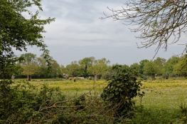 Balade en campagne