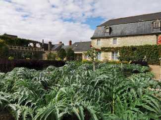 chateau et jardins de villandry_New Name_IMG_20190928_142447