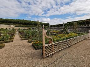 chateau et jardins de villandry_New Name_b83726c9-f6ca-4b30-900b-bb7d89856702