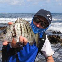 Tout savoir sur la pêche du sar, techniques et conseils