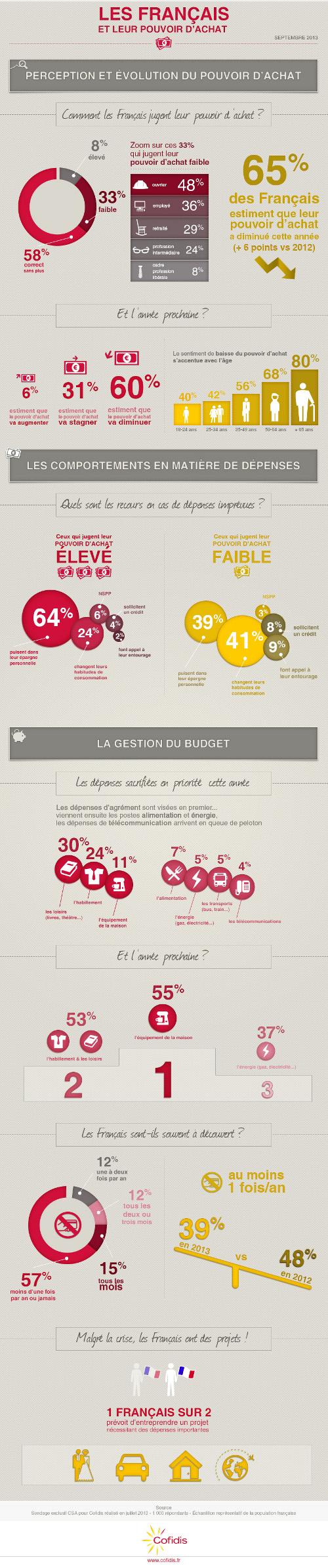 Le pouvoir d'achat en France en 2013, étude Cofidis