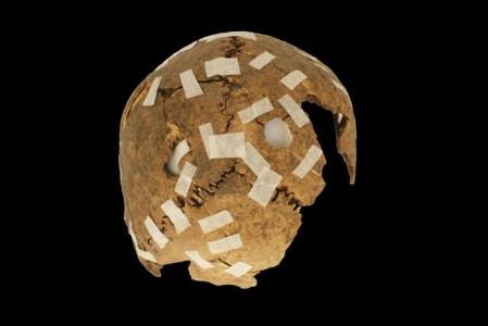 Антропологи рассказали, зачем инки отрубали головы и изувечивали черепа
