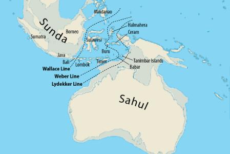 Заселение Австралии 65 тысяч лет назад могло быть планомерной морской колонизацией
