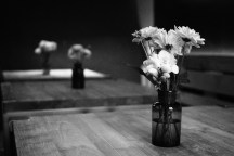 Blumen müssen blühen
