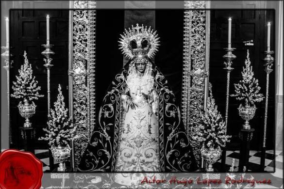 Besamano María Santísima de las Penas