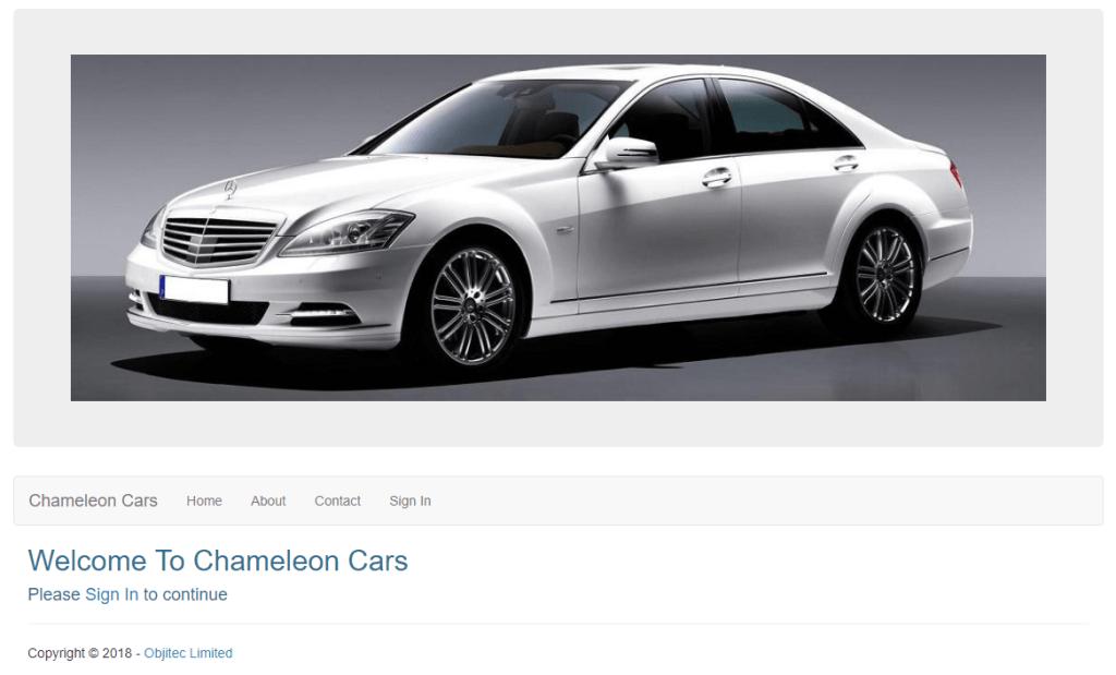 executive car rental system