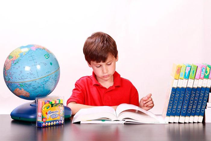 Menino Leitura Estudando Livros Crianças Jovem. Foto: Pixabay /White77