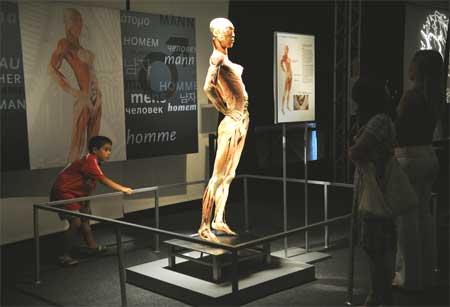 Exposição corpos