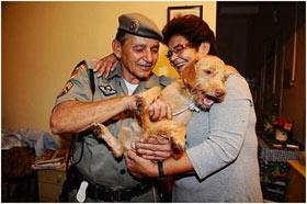 Cachorro Pinpoo