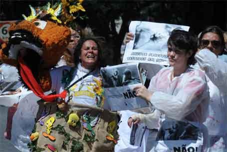 Foto 3 - Protesto de manifestante contra experimentação animal