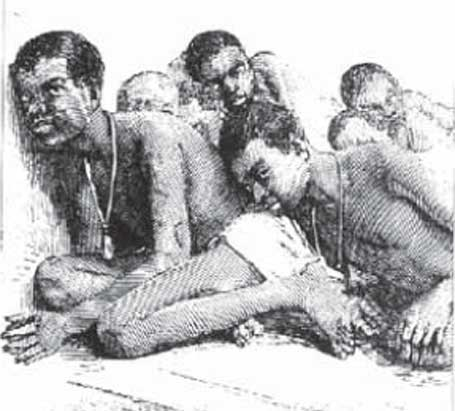 Ilustração a posição como os escravos eram transportados, quando o 13 vira 20