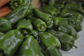 Foto do pimentão - primeiro lugar entre os mais envenenados