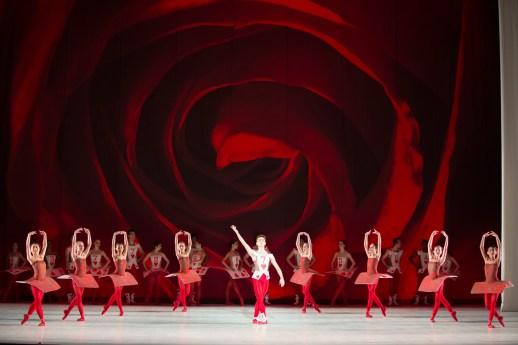 The Washington Ballet_ALICE (in wonderland) | Photo by media4artists l Theo Kossenas