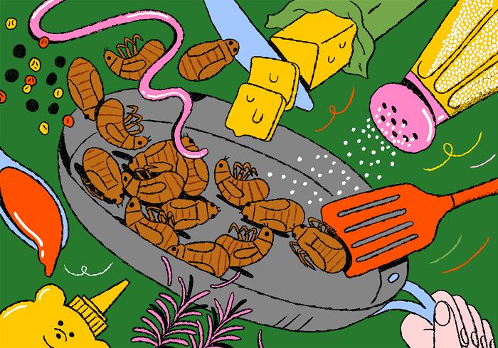 cicadas-prog