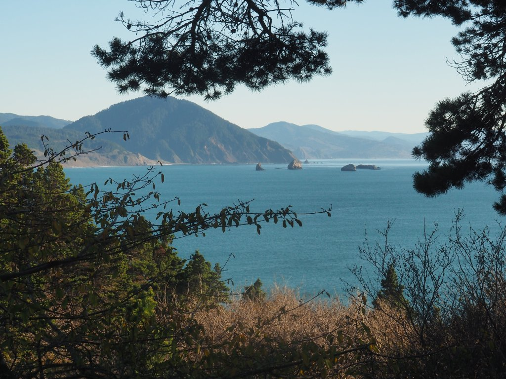 View from Port Orford Head
