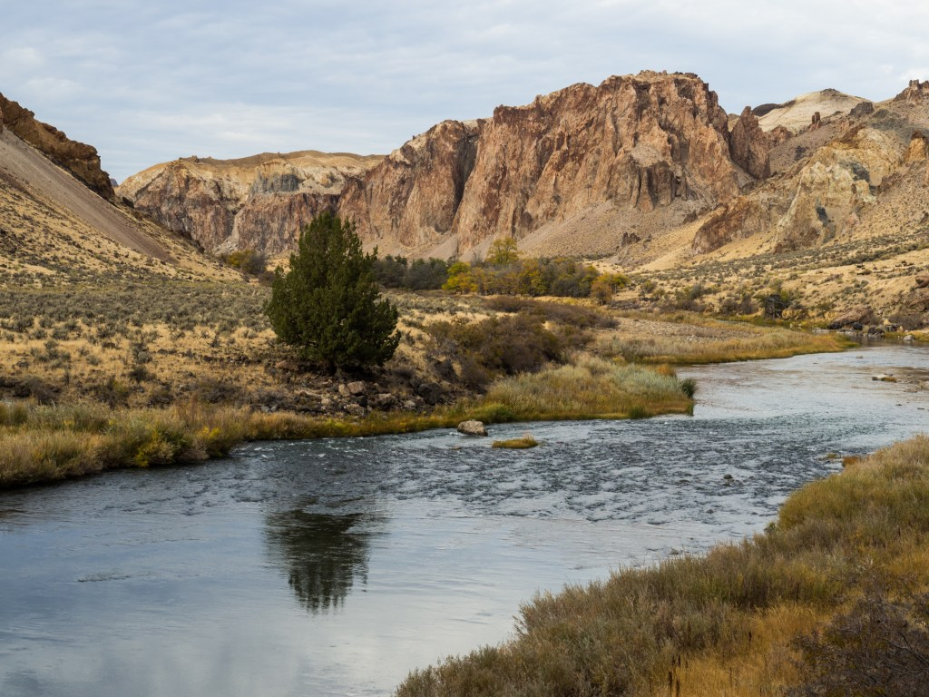 Owyhee River at Birch Creek