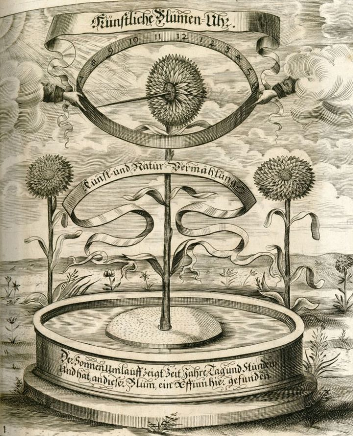 esoteric science