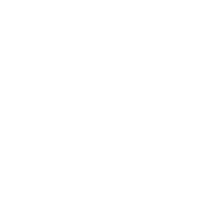 Logo-Digistormer
