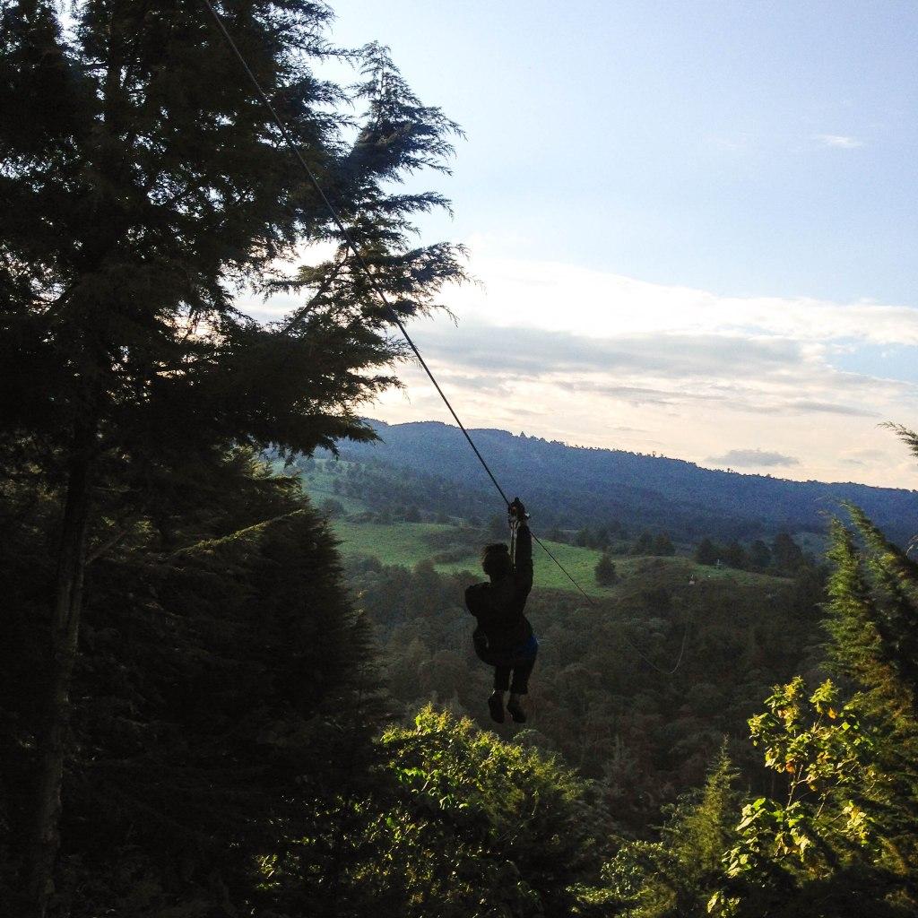 Ziplining at the Forest, Kereita