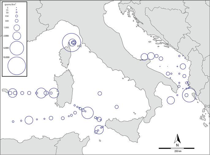 situazioni-vortici-di-plastiche-dell-mediterraneo