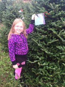 Spitler Christmas trees-4