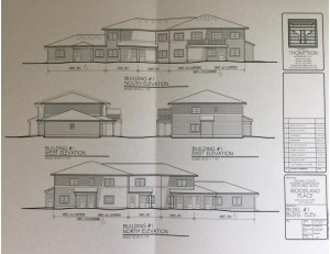 woodland place drawing