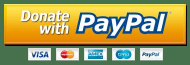 Podpořte blog přes PayPal