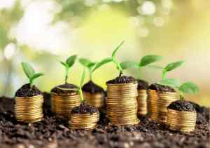 Do you have a wealth creation plan