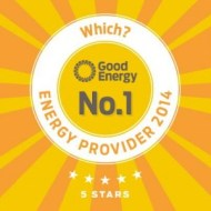Good Energy no1 provider 2014