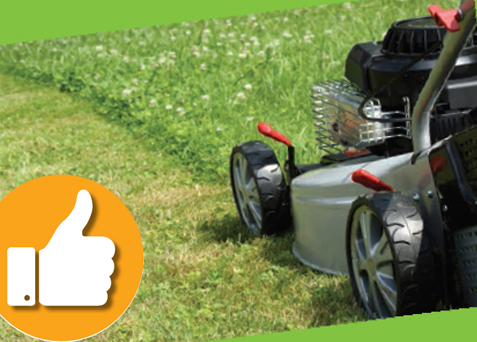 Grounds maint mown lawn thumb