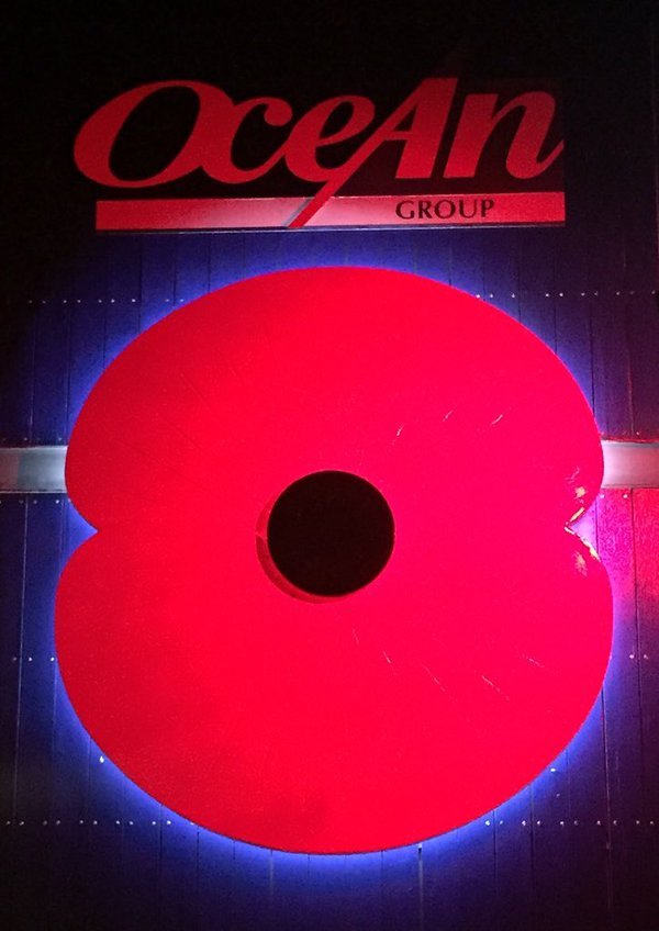 Giant poppy illuminated