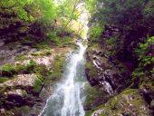 Goldstream-National-Park