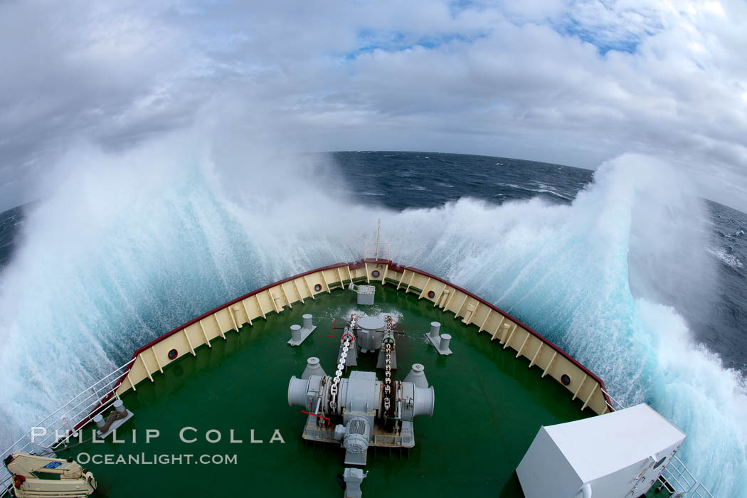 The Drake Passage Southern Ocean Natural History