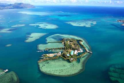 Hawaii Institute of Marine Biology, University of Hawaii
