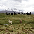 Ch_Arica_no_mineria_120