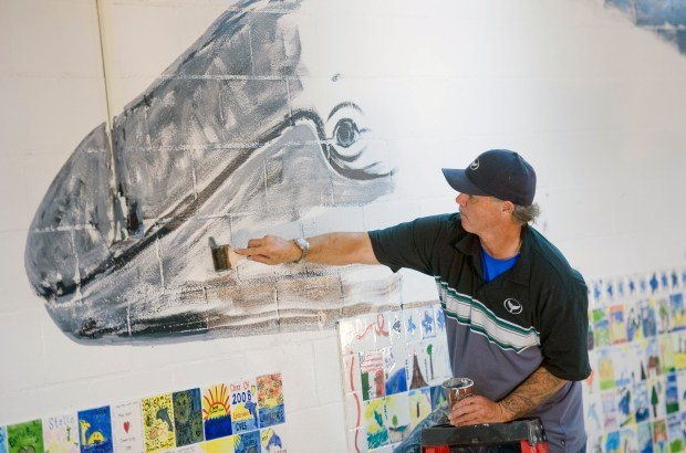 The gray whale starts to take shape as Laguna Beach artist Wyland paints a mural for Crown Valley Elementary School's Celebration Wall. ///ADDITIONAL INFO: ln.crownvalley.0518 - 5/17/16 - Photo by PAUL RODRIGUEZ - Laguna Beach artist Wyland paints a mural at Crown Valley Elementary School.