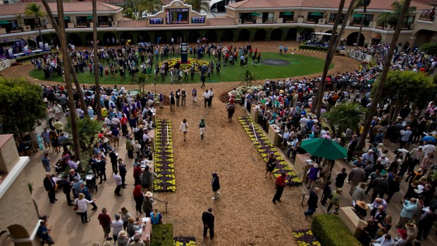 Race fans gather before post time at the paddock of the Del Mar racetrack.