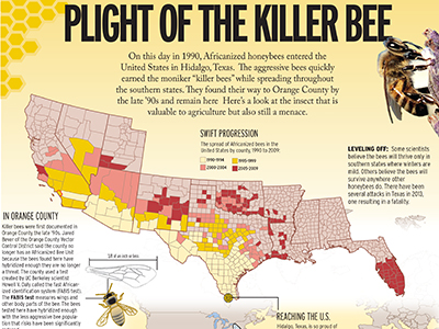 africanized bees in ga