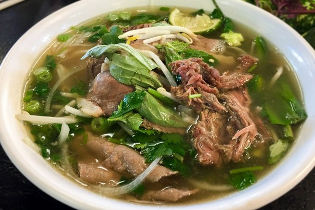 Oxtail pho is served at Pho 79 in Garden Grove. (Photo by Brad A. Johnson, Orange County Register/SCNG)