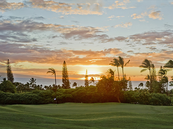The Royal Kaanapali Golf Course has a nice mix of holes and scenic viewing options.