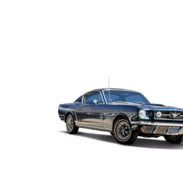 Ford Mustang 289 Fastback stehend