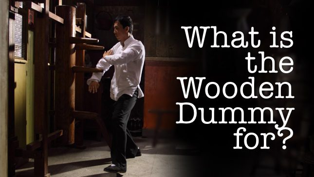 What is the Wooden Dummy For? - The Mook Jong of Wing Chun