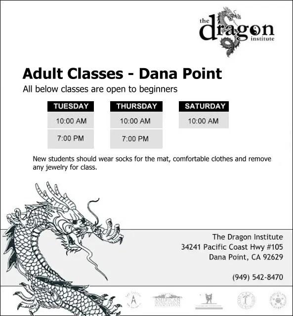 Adult Martial Arts Classes Dana Point