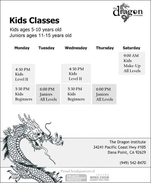 Kids Martial Arts Dana Point